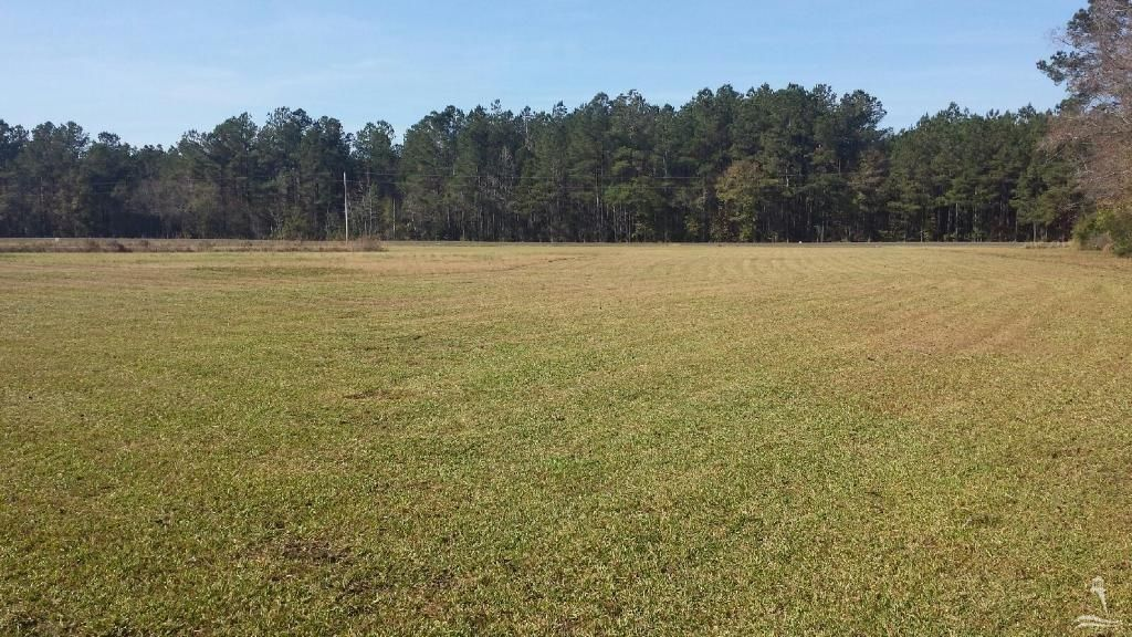 Carolina Plantations Real Estate - MLS Number: 100033600