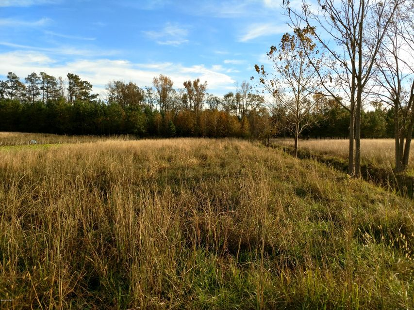 Carolina Plantations Real Estate - MLS Number: 100038307