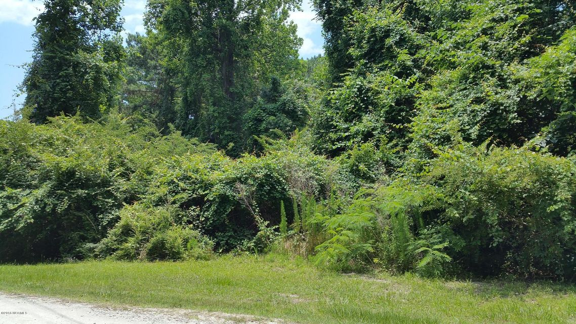 Turkey Point Road, Sneads Ferry, NC 28460