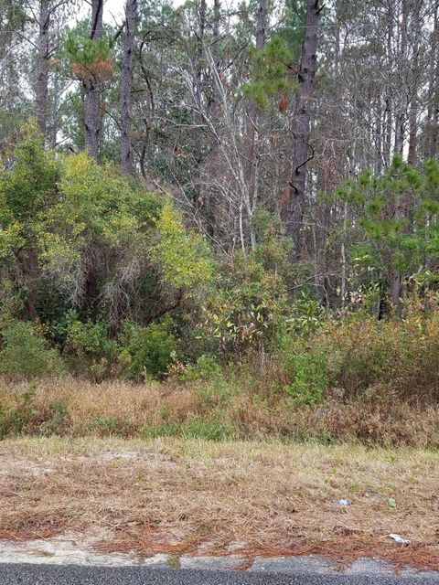 Carolina Plantations Real Estate - MLS Number: 100039807