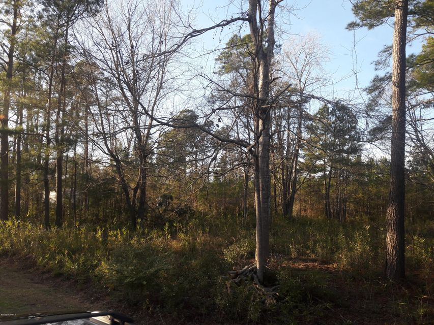 Carolina Plantations Real Estate - MLS Number: 100040620