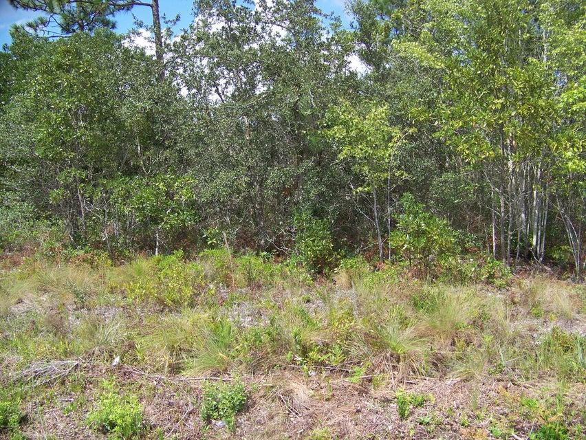 Carolina Plantations Real Estate - MLS Number: 100025048