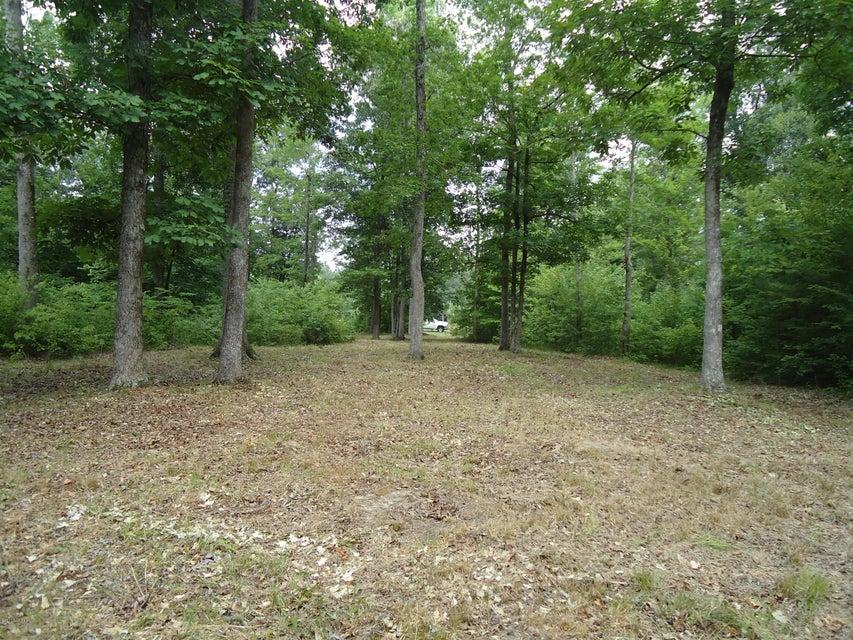 58 See View Lane,Hertford,North Carolina,Residential land,See View,100042624