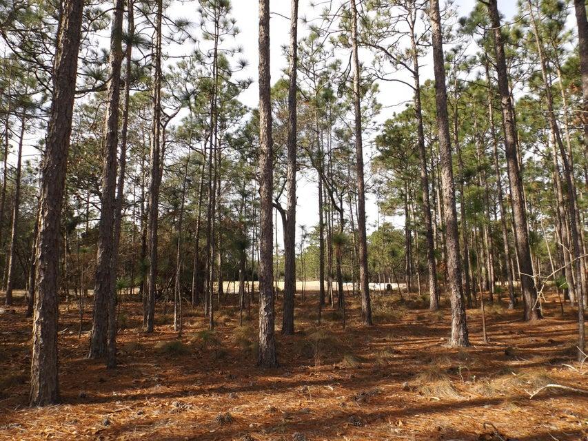 Carolina Plantations Real Estate - MLS Number: 100042544