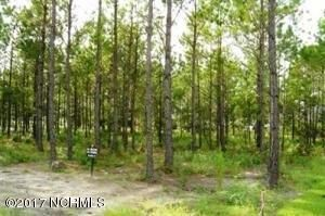 Carolina Plantations Real Estate - MLS Number: 100043062