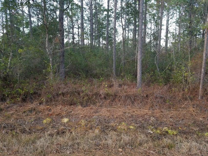 Carolina Plantations Real Estate - MLS Number: 100045493