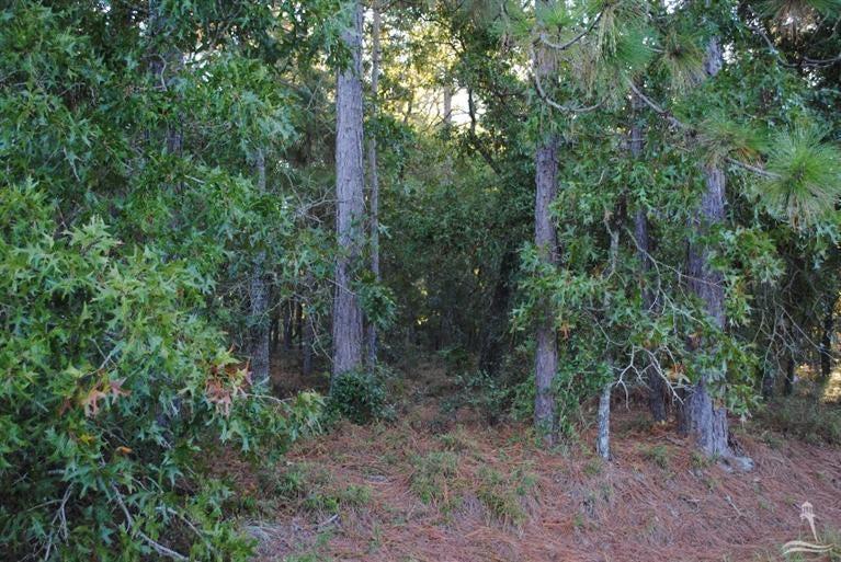 Carolina Plantations Real Estate - MLS Number: 100046077