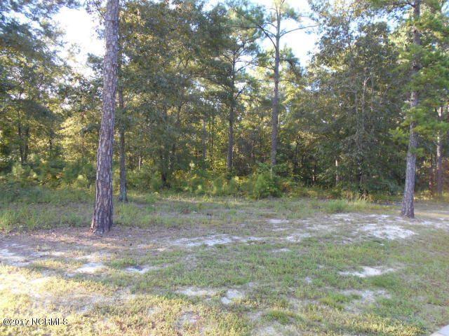 Carolina Plantations Real Estate - MLS Number: 100053517