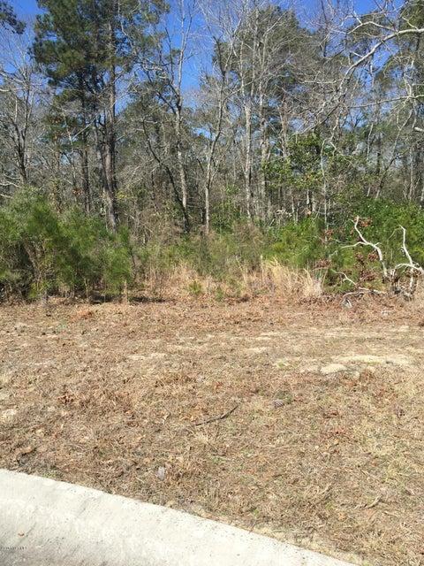 Carolina Plantations Real Estate - MLS Number: 100053563