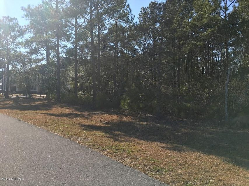 319 E Dolphin View Court, Sneads Ferry, NC 28460