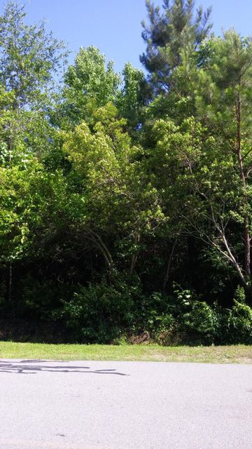 434 Chadwick Shores Drive, Sneads Ferry, NC 28460