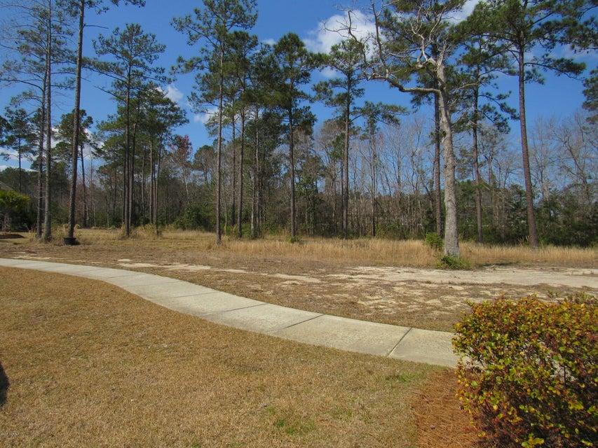 Brunswick Forest Real Estate - http://cdn.resize.sparkplatform.com/ncr/1024x768/true/20170325025625513528000000-o.jpg
