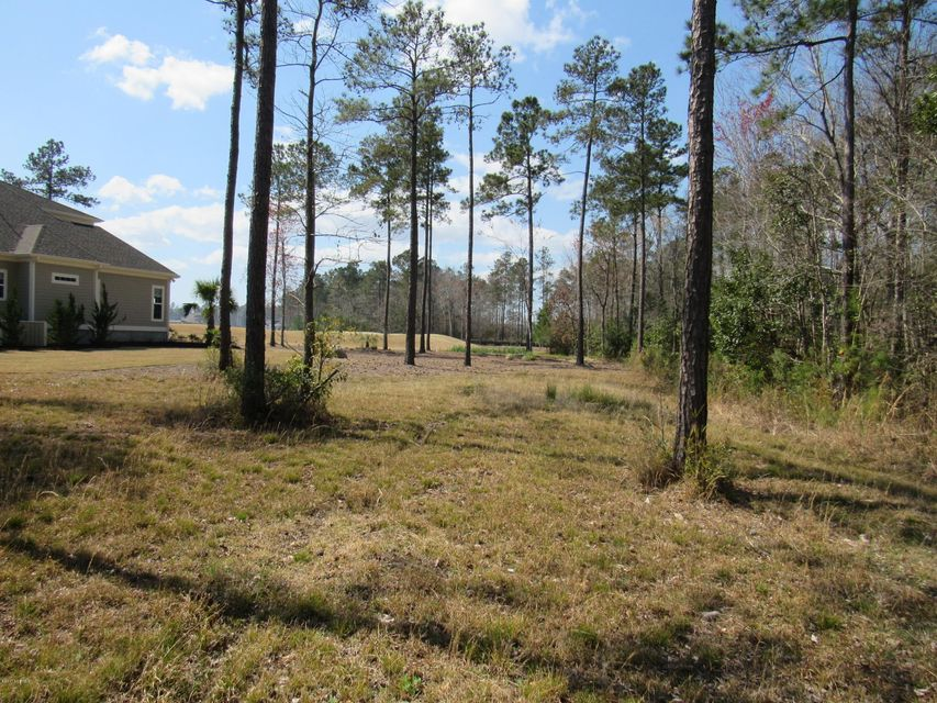 Brunswick Forest Real Estate - http://cdn.resize.sparkplatform.com/ncr/1024x768/true/20170325025745247832000000-o.jpg