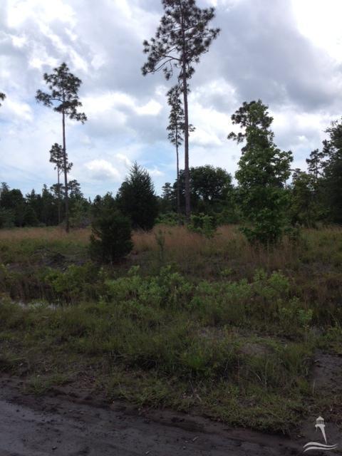 Carolina Plantations Real Estate - MLS Number: 100055160