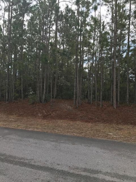 138 Shellbank Drive, Sneads Ferry, NC 28460