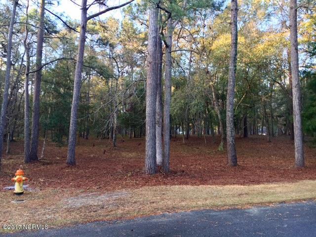 Carolina Plantations Real Estate - MLS Number: 100055310