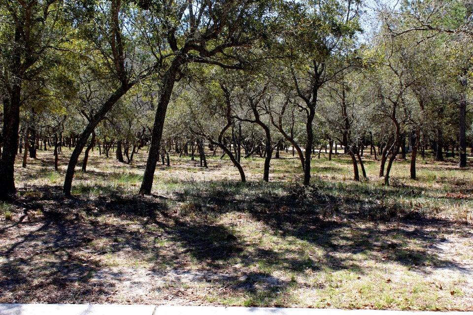 Carolina Plantations Real Estate - MLS Number: 100056731