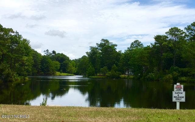 River Run Plantation Real Estate - http://cdn.resize.sparkplatform.com/ncr/1024x768/true/20170413171720168711000000-o.jpg