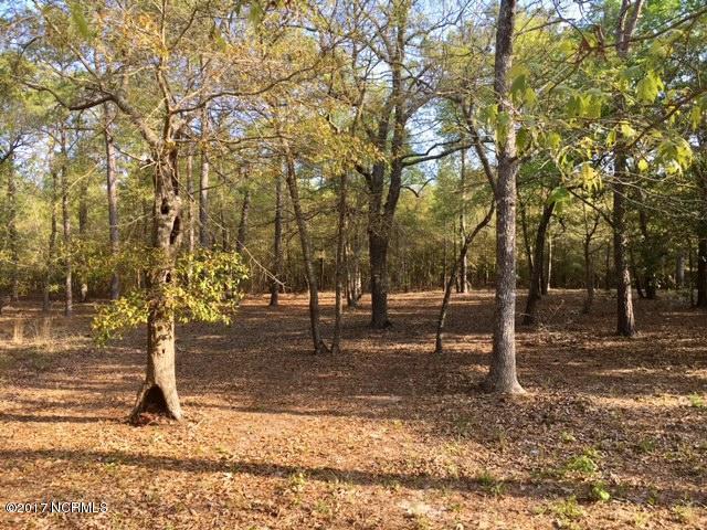 River Run Plantation Real Estate - http://cdn.resize.sparkplatform.com/ncr/1024x768/true/20170413172153643483000000-o.jpg