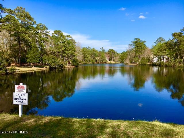 River Run Plantation Real Estate - http://cdn.resize.sparkplatform.com/ncr/1024x768/true/20170413172258564257000000-o.jpg