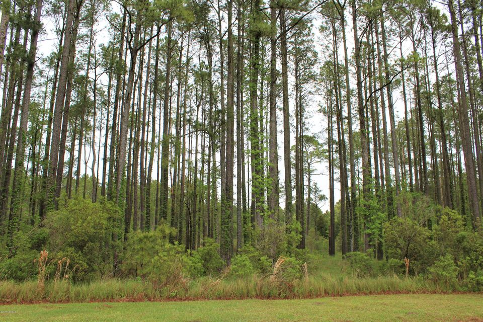 58 Dowry Creek,Belhaven,North Carolina,Residential land,Dowry,100058696