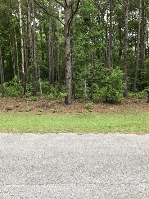 Lot 20 Paul Drive,Trenton,North Carolina,Residential land,Paul,100058988