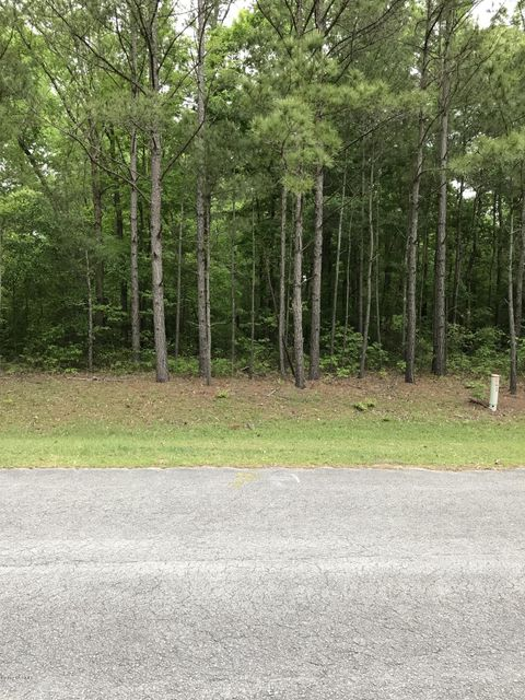 Lot 19 Paul Drive,Trenton,North Carolina,Residential land,Paul,100058985