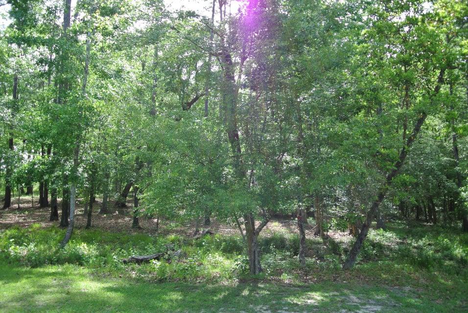 Carolina Plantations Real Estate - MLS Number: 100060689