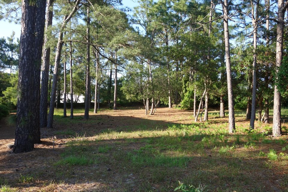 Carolina Plantations Real Estate - MLS Number: 100062348
