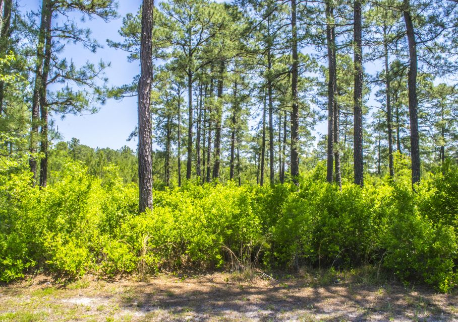 Carolina Plantations Real Estate - MLS Number: 100063026