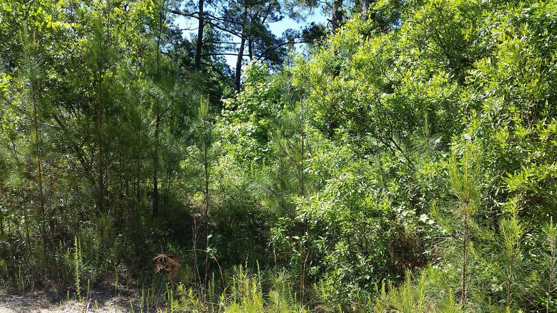 Carolina Plantations Real Estate - MLS Number: 100063808