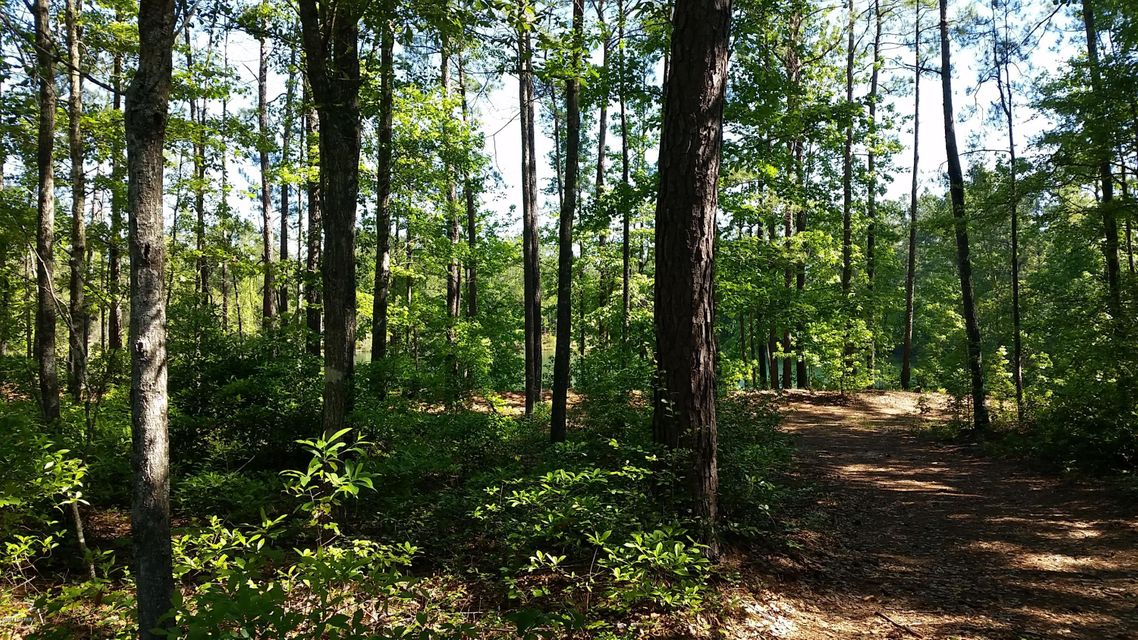 Carolina Plantations Real Estate - MLS Number: 100067865