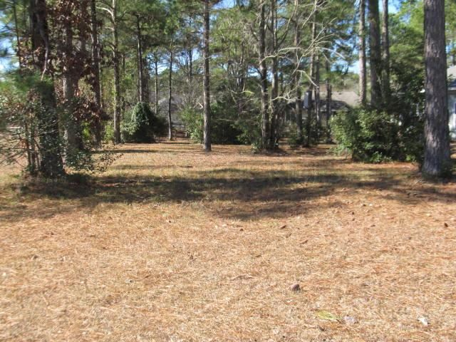 Carolina Plantations Real Estate - MLS Number: 100068960
