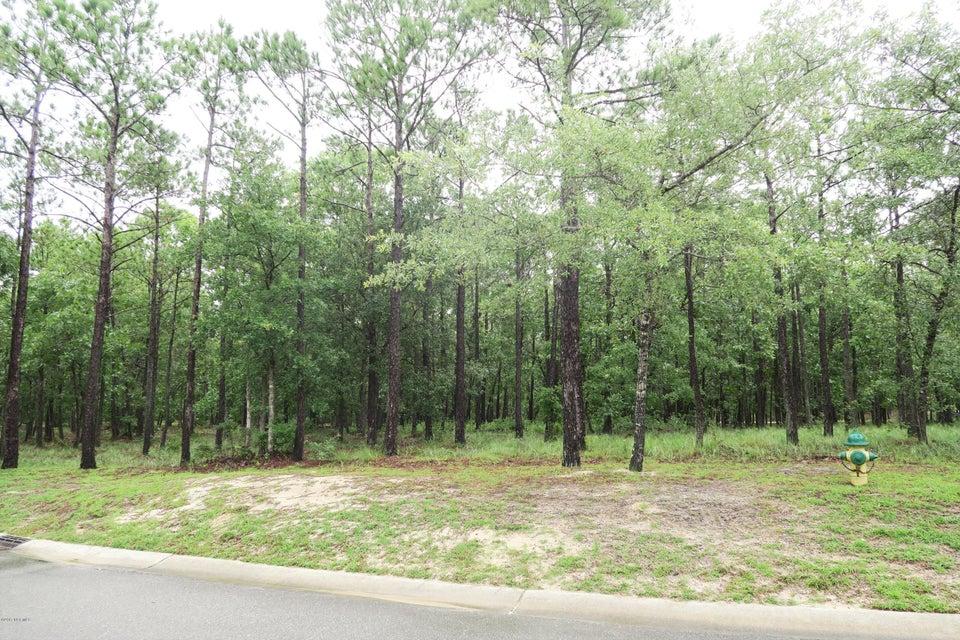 Carolina Plantations Real Estate - MLS Number: 100069073