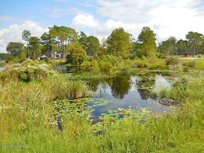 Boiling Spring Lakes Real Estate - http://cdn.resize.sparkplatform.com/ncr/1024x768/true/20170622210436213893000000-o.jpg