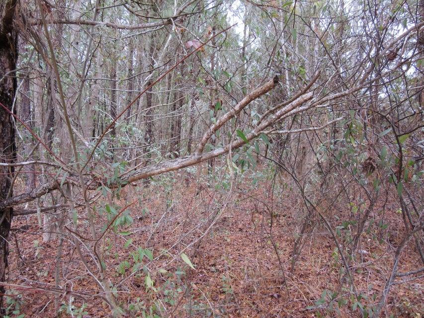 Carolina Plantations Real Estate - MLS Number: 100069316