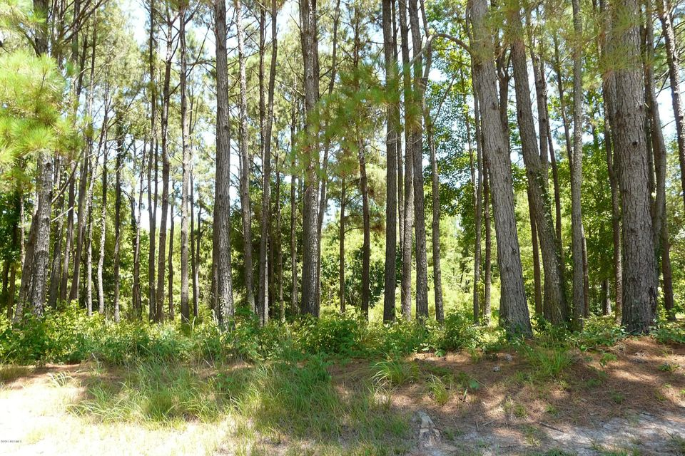 Carolina Plantations Real Estate - MLS Number: 100072760