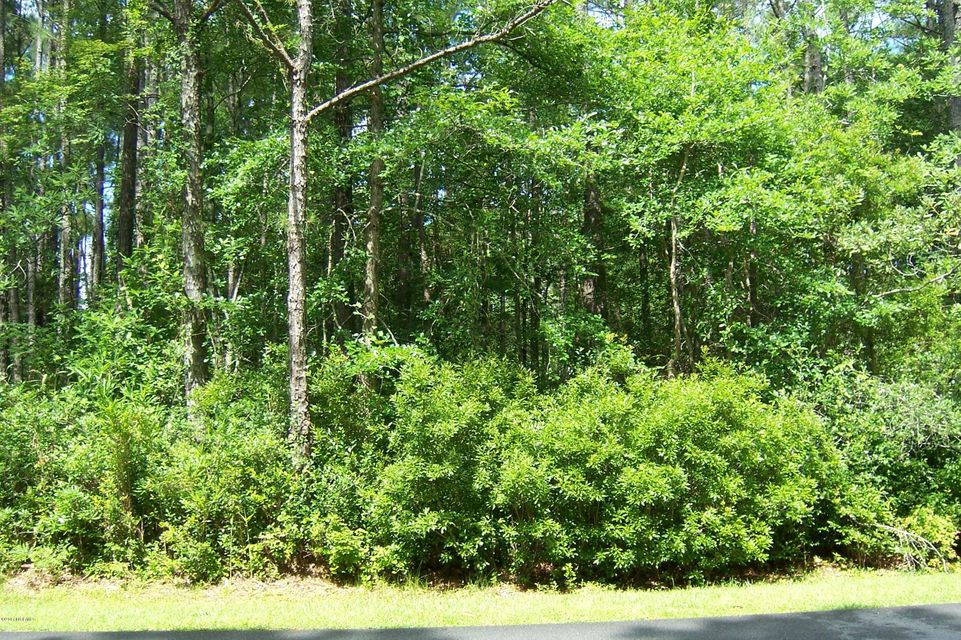 2110 Royal Pines Drive,New Bern,North Carolina,Residential land,Royal Pines,100072897