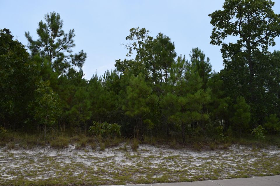 Carolina Plantations Real Estate - MLS Number: 100074341