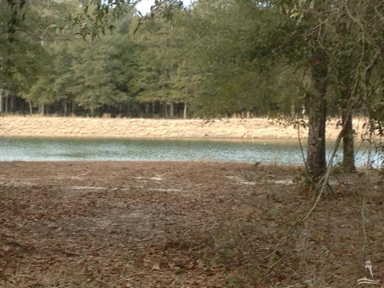 Carolina Plantations Real Estate - MLS Number: 100076341