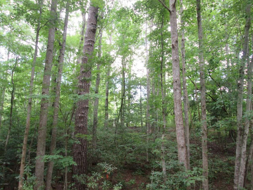 Lot 26 Birch Drive,Blounts Creek,North Carolina,Undeveloped,Birch,100075268