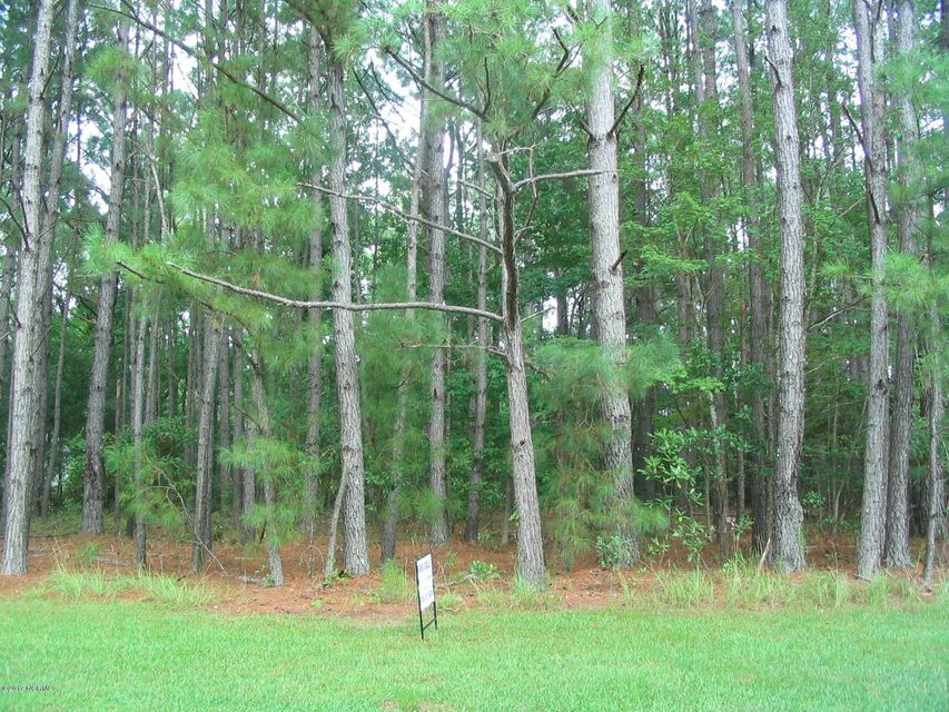Carolina Plantations Real Estate - MLS Number: 100078330
