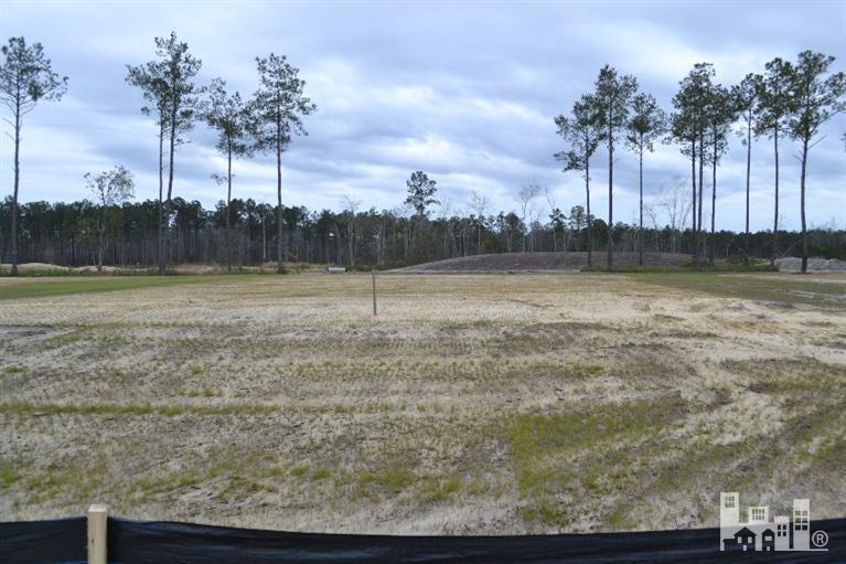 Carolina Plantations Real Estate - MLS Number: 100078779