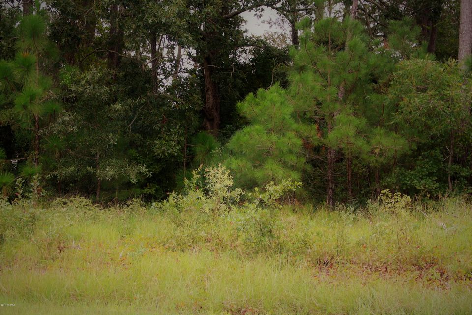 Carolina Plantations Real Estate - MLS Number: 100079638
