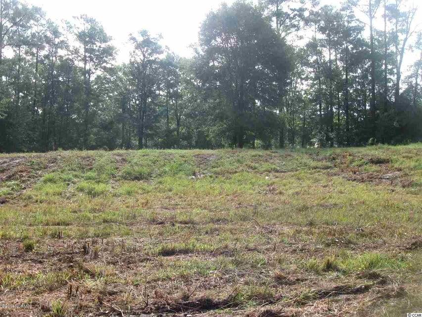 Carolina Plantations Real Estate - MLS Number: 100080482