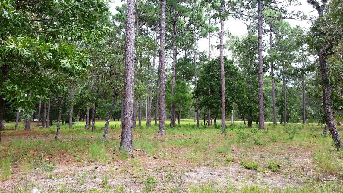 1 Loblolly Drive,Shallotte,North Carolina,Residential land,Loblolly,100081766