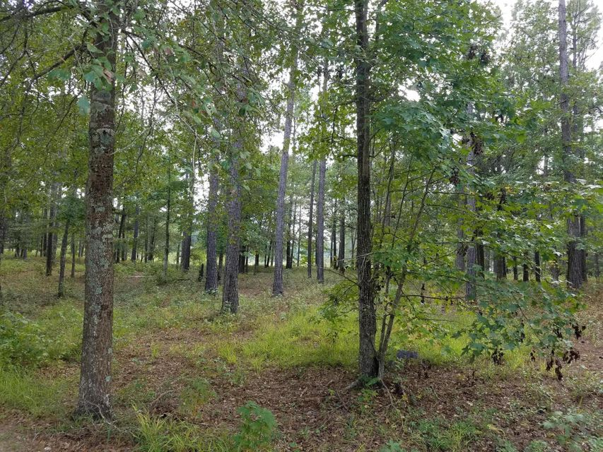 Carolina Plantations Real Estate - MLS Number: 100082115