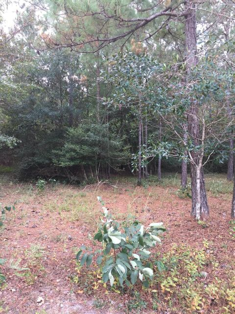 Carolina Plantations Real Estate - MLS Number: 100084600