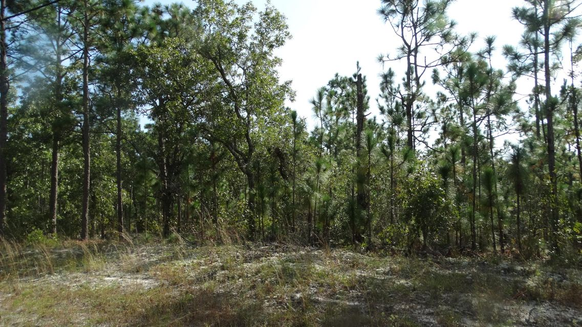Carolina Plantations Real Estate - MLS Number: 100085859