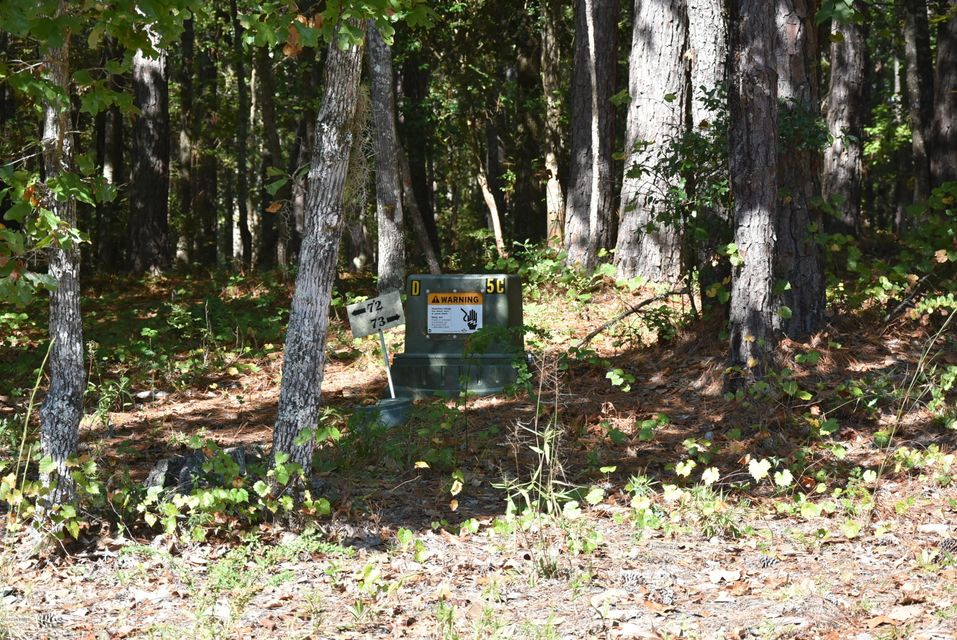 Carolina Plantations Real Estate - MLS Number: 100086221